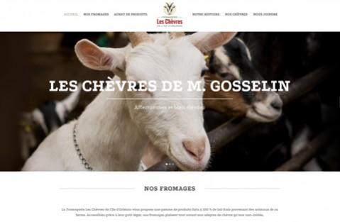 Antilope-ProjetsClients-Chèvres